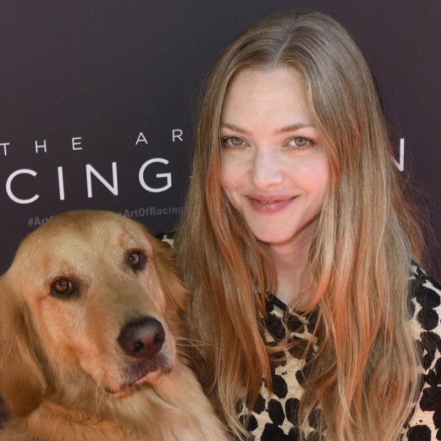 Amanda Seyfried with movie dog