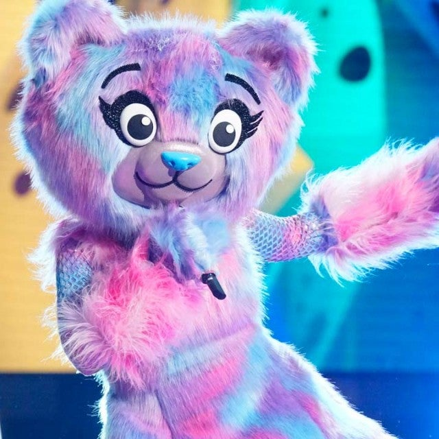 The Bear on The Masked Singer