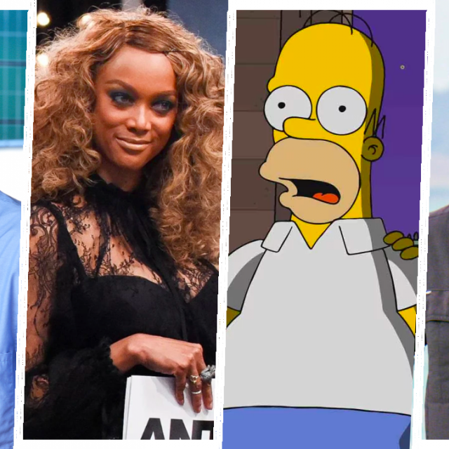 ER, America's Next Top Model, The Simpsons, Survivor