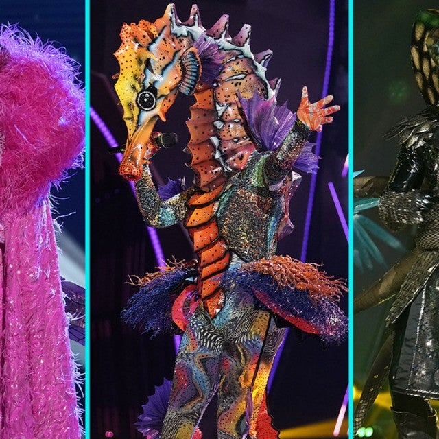 The Crocodile, The Seahorse, The Serpent on The Masked Singer