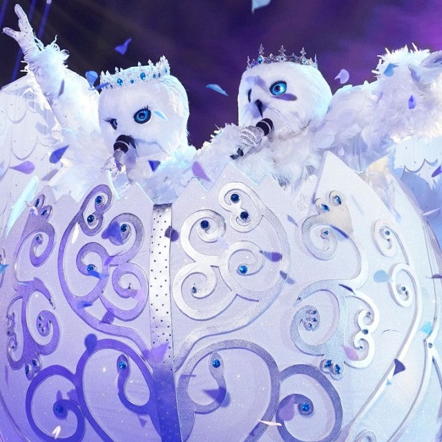 The Snow Owls on 'The Masked Singer'