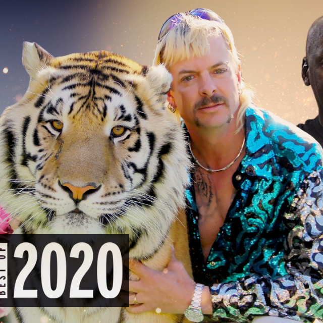 2020 in Movies and TV