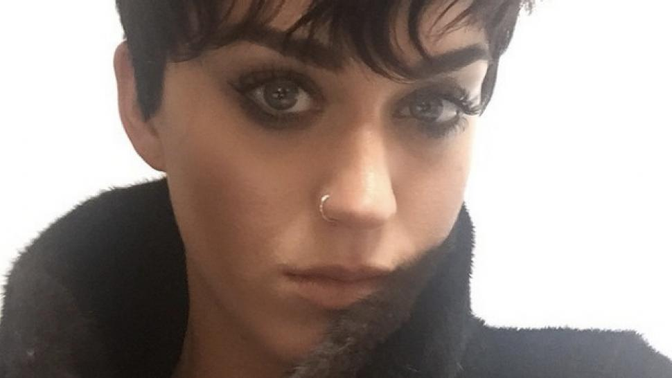 Katy Perry Hair Styles: Katy Perry Shows Off Super Short Hair: 'I Asked For The