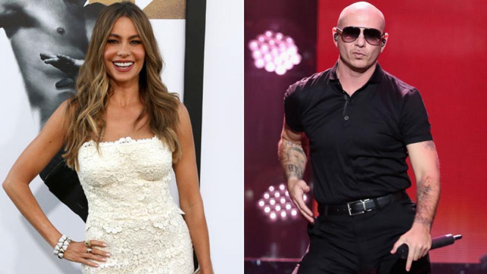 Pitbull Gives Surprise Performance At Sofia Vergara And Joe