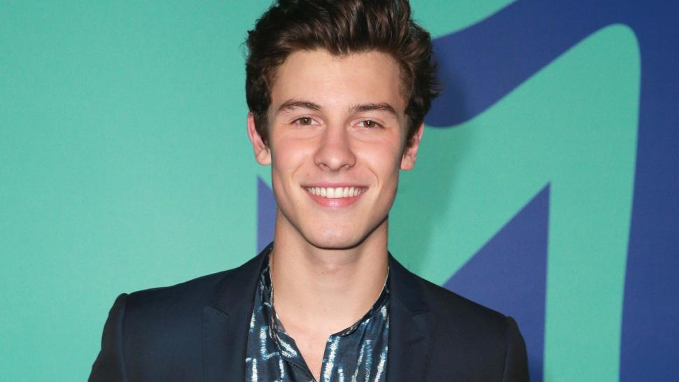 Shawn Mendes And His Mom Get Adorable Matching Tattoos
