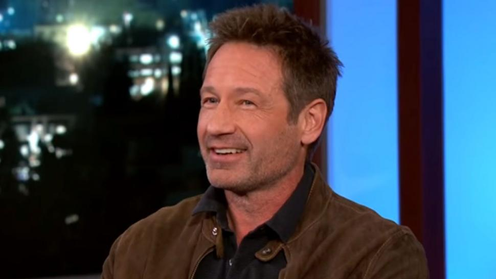 Image result for david duchovny