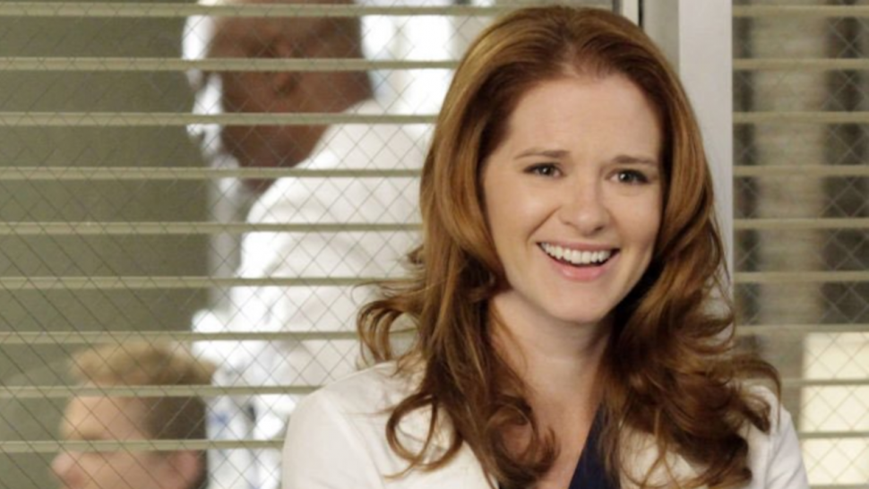 Grey's Anatomy: Sarah Drew Devastated Jackson and April Not Being Endgame