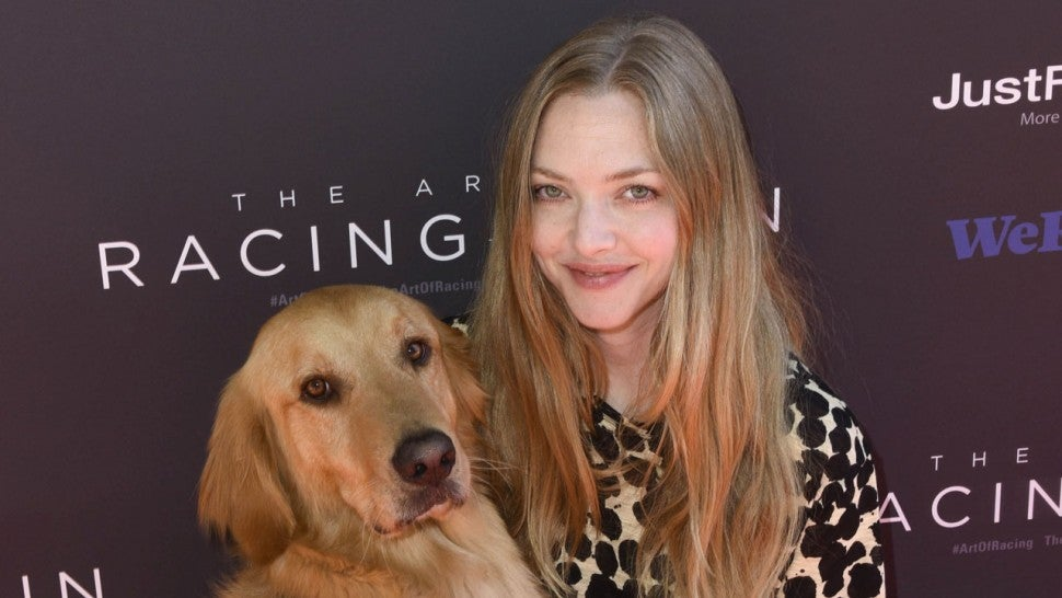 Star Sightings: Amanda Seyfried Surprises Fans With Puppy Love