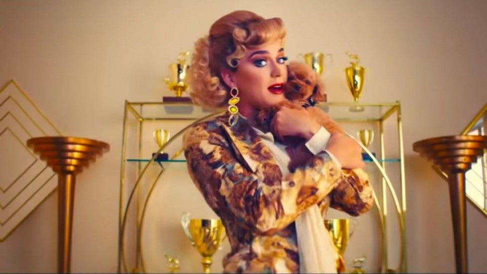 Katy Perry Turns Her Puppy, Nugget, Into a Show Dog in ...