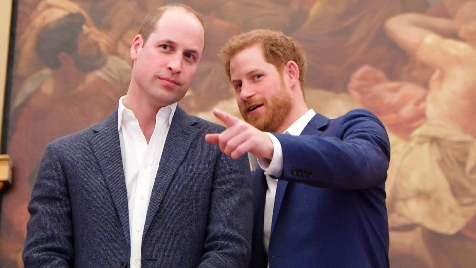 Prince Harry and Prince William Announce Meaningful Debut Date for Commissioned Princess Diana ...