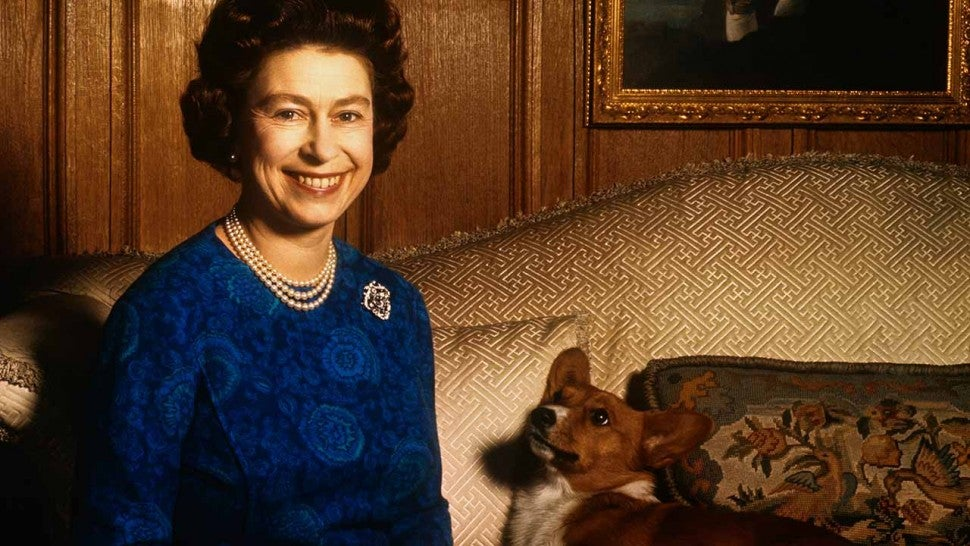 Queen Elizabeth II smiles radiantly during a picture-taking session in the salon at Sandringham House. Her pet dog looks up at her.