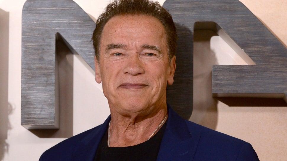 Arnold Schwarzenegger Gets Birthday Love From His Kids on 74th Birthday.jpg