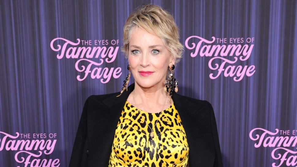 Sharon Stone Talks Raising Awareness for Sudden Infant Death After Passing of Baby Nephew River (Exclusive).jpg
