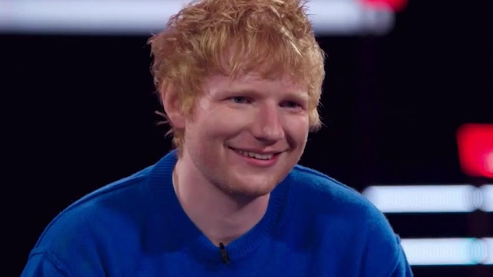 'The Voice': David Vogel's Acoustic Selena Gomez Cover Has Ed Sheeran 'Geeking Out'.jpg