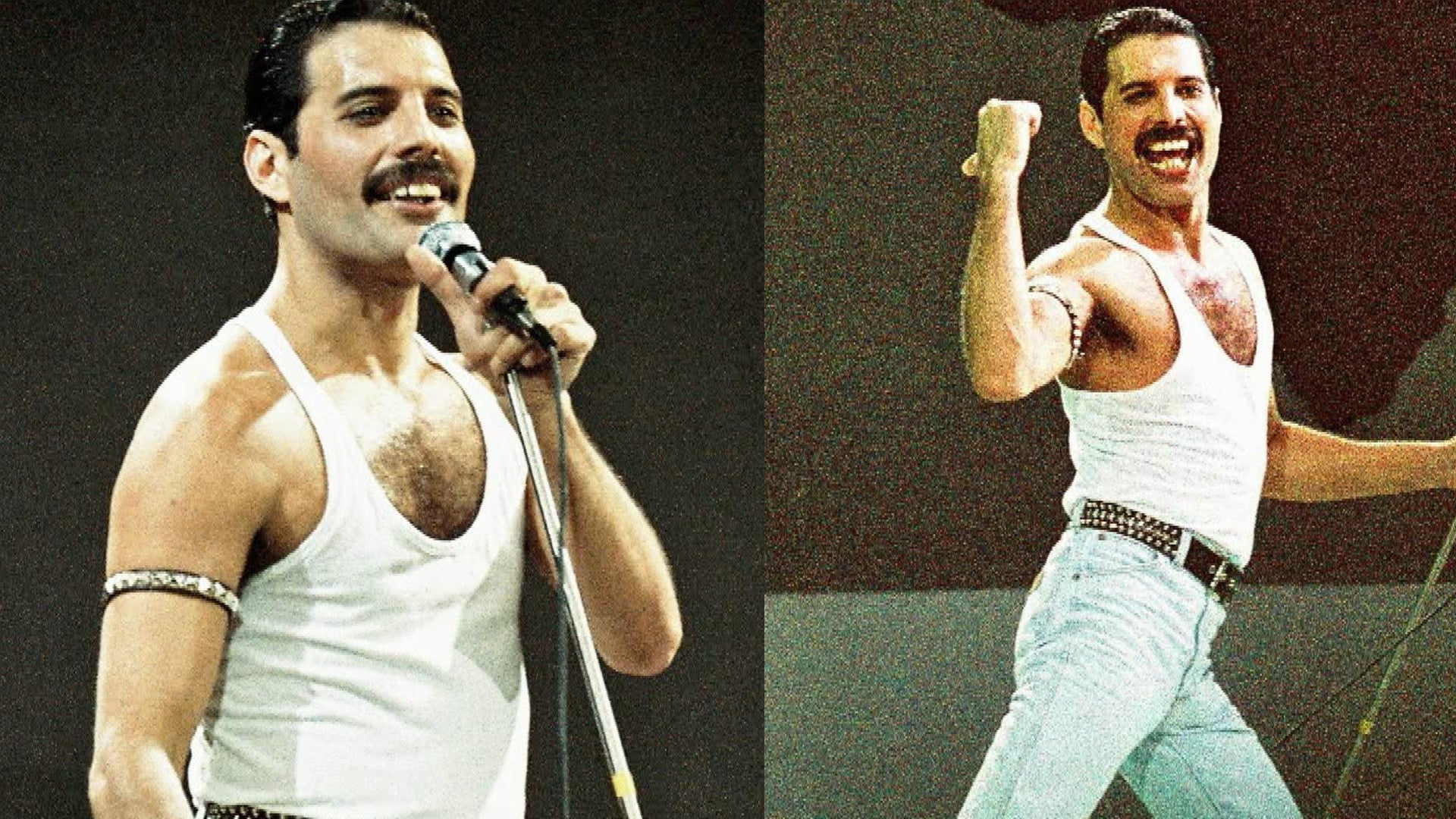Download Freddie Mercury Costume