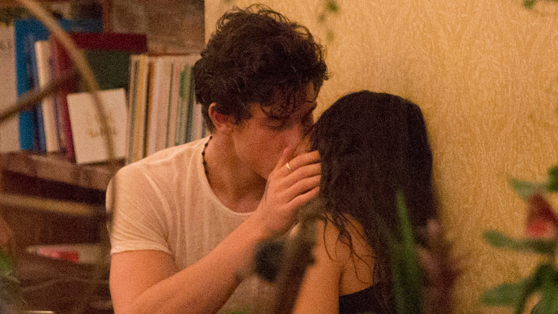 Camila Cabello and Shawn Mendes Share a Kiss During Date in ...